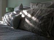 sypialnia na szaro